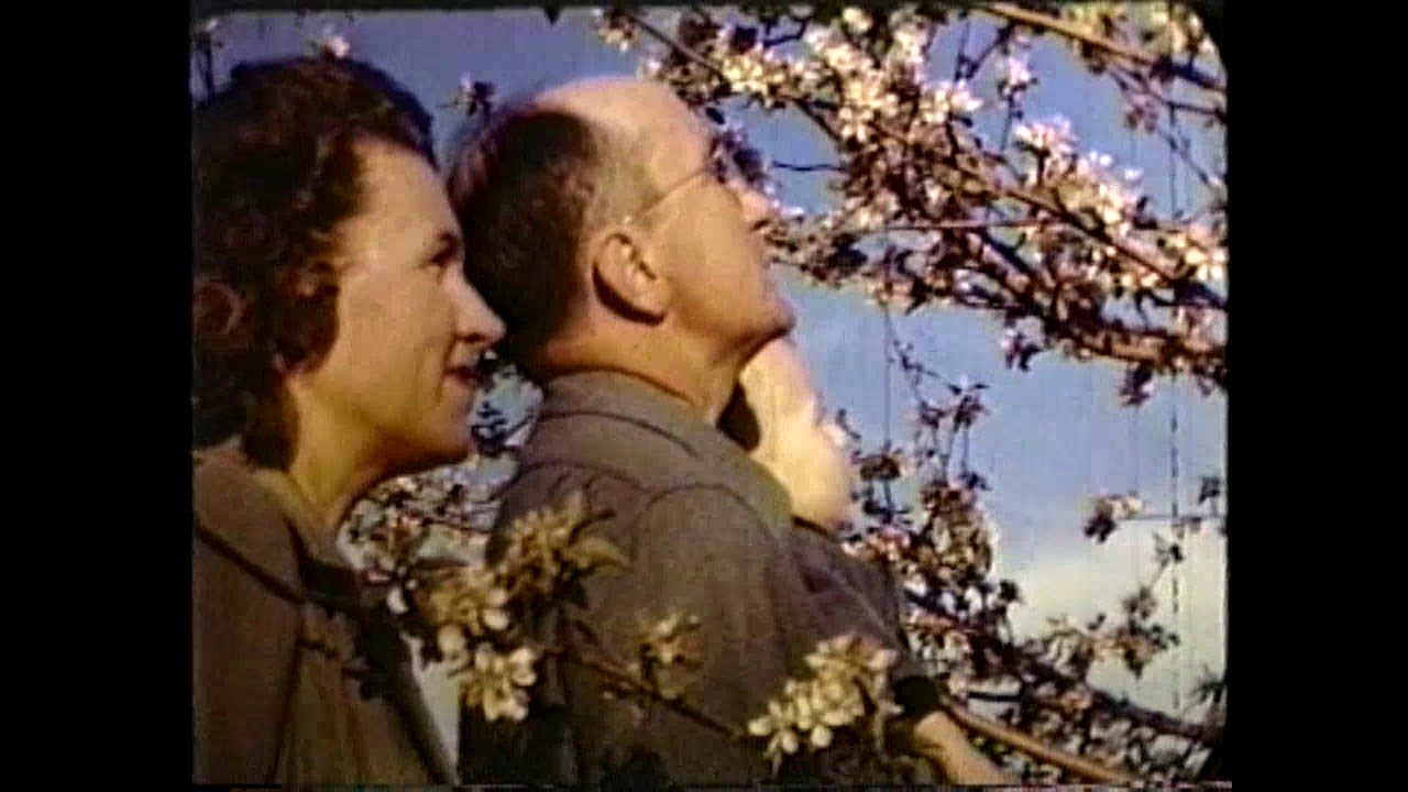 Chazy Orchards Film - 1948