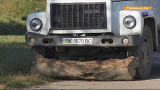 Мусорный скандал – коммунальщики засыпали села и лес отходами