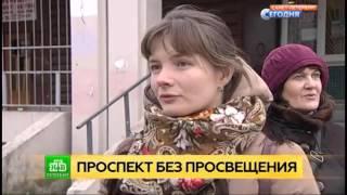 Петербуржцы просят не убирать библиотеку на Комендантском проспекте