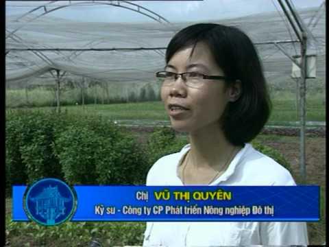 Phóng sự HTV1 về ZEN 27/8/2012