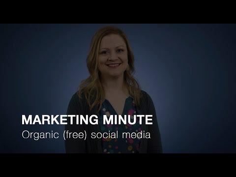 Organic (free) social media