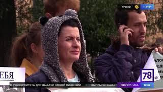 В Санкт-Петербурге прошла Всероссийская акция за принятие закона о защите животных.