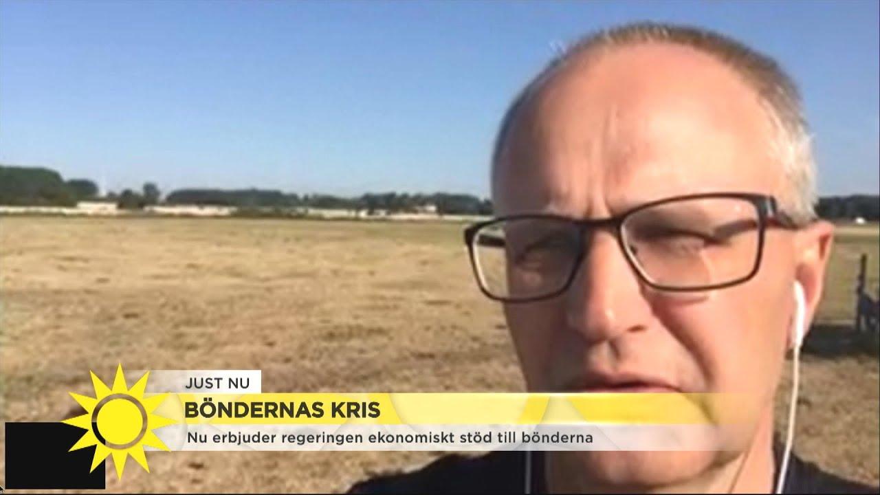 """Statligt bidrag till bönder i kris: """"Vi är tacksamma för det starka stödet""""  - Nyhetsmorgon (TV4)"""