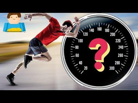 Какую скорость может развить человек? | Plushkin