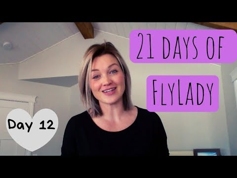 Day 12 Flylady Laundry Routine | 21 Baby Steps | The Secret Slob