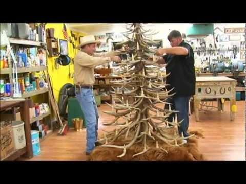Antler Christmas Trees Wmv Youtube