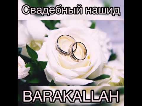 Свадебный нашид- BARAKALLAH.