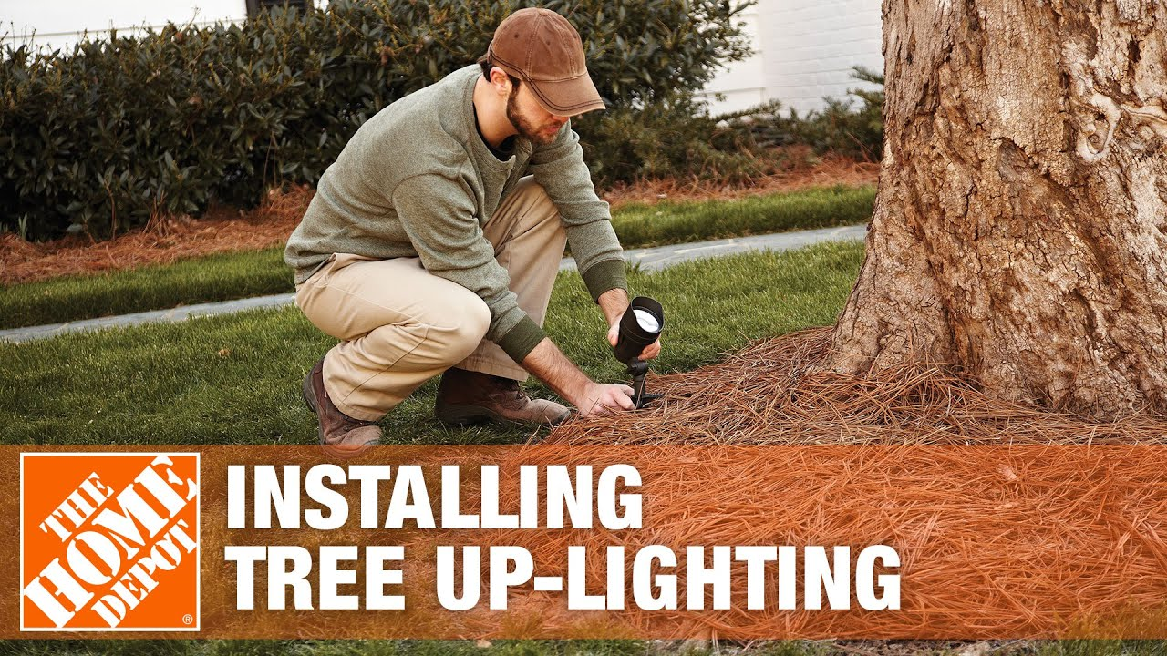 Installing Tree Up Lighting Youtube Way And 4 Wiring Diagrams With Multiple Lights Doityourself
