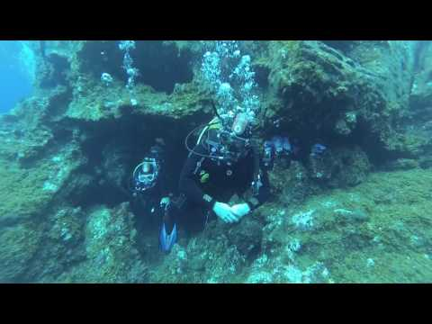 Diving at La Restinga - El Hierro Canary Islands