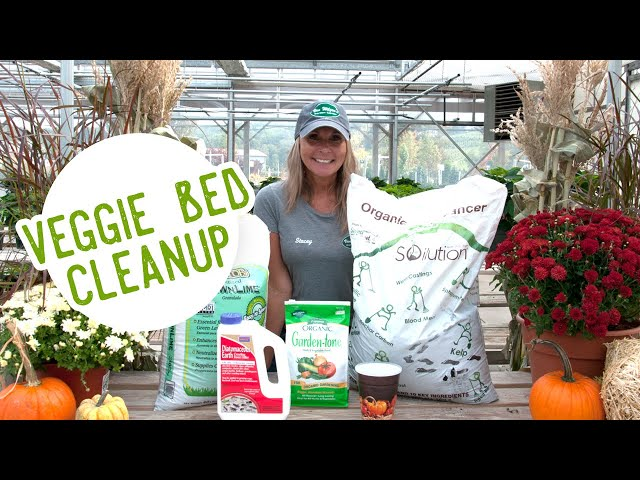 FALL TIP: Putting Your Veggie Garden to Bed