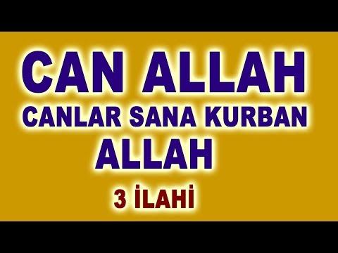 CAN ALLAH CANLAR