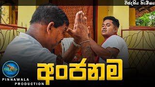 අංජනම - Anjanama (Pinnawala Production)