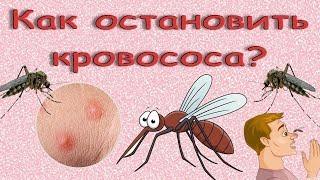 видео: Как остановить кровососа. Борьба с комарами народными средствами.