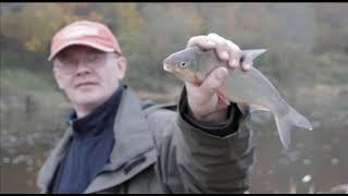 """Передача """"На рыбалке"""" 22 октября 2013 Ловля рыбца на р.Шешупе."""