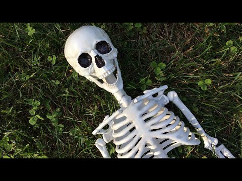 Skeleton! (A short horror film) Halloween skit #1