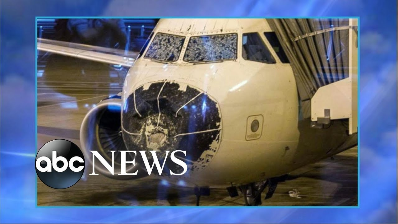 American Airlines Flight Forced to Land Due to Severe Weather