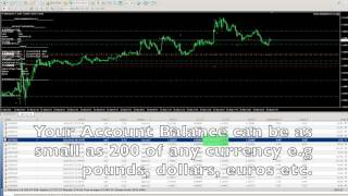 FOREX ROBOT MADE $4000 TRADING MINI-LOTS WITHIN 10 DAYS!!! - SHORTER VIDEO