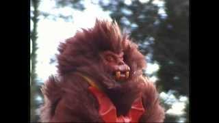 Hordak  Leech  Grizzlor  Wilde Horde  Masters of the Universe Teil 9 Fantastic 287