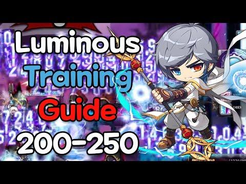 Luminous Training Guide