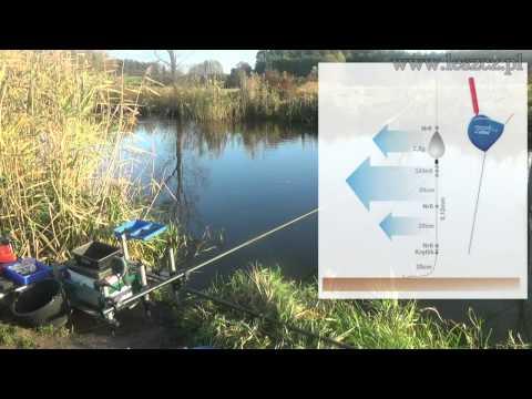 рыбалка на клязьме на поплавок