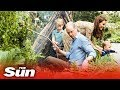 Prince George, Louis and Princess Charlotte play in the woods at Chelsea Flower Show