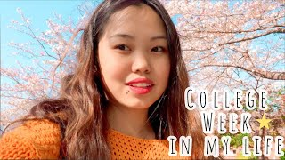 A Week of My Life in JAPAN 🇯🇵 |  College, Planning, Jobs