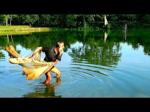 Net Fishing (Old Man)Fishing With Cast Net।Cast Net Fishing In The Village (part-49)