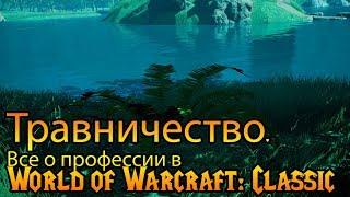 Травничество. Все о профессии в World of Warcraft: Classic