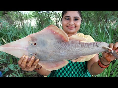 VILLAGE FOODS- Giant GUITAR FISH Curry Recipe- South Indian Style Cooking Shovelnose Big Fish Recipe