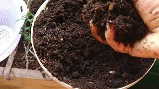 Composting made simple