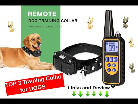 TOP 3 to buy Waterproof Electric Dog Training Collar - full review and links to buy