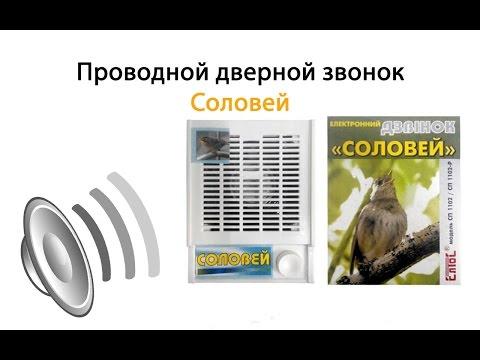 видео: Проводной дверной звонок Соловей: полный обзор