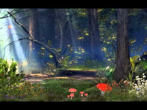 Интернет-магазин Mehofoto лесной фон грибы и сказочные фонари фото ... | 360x480