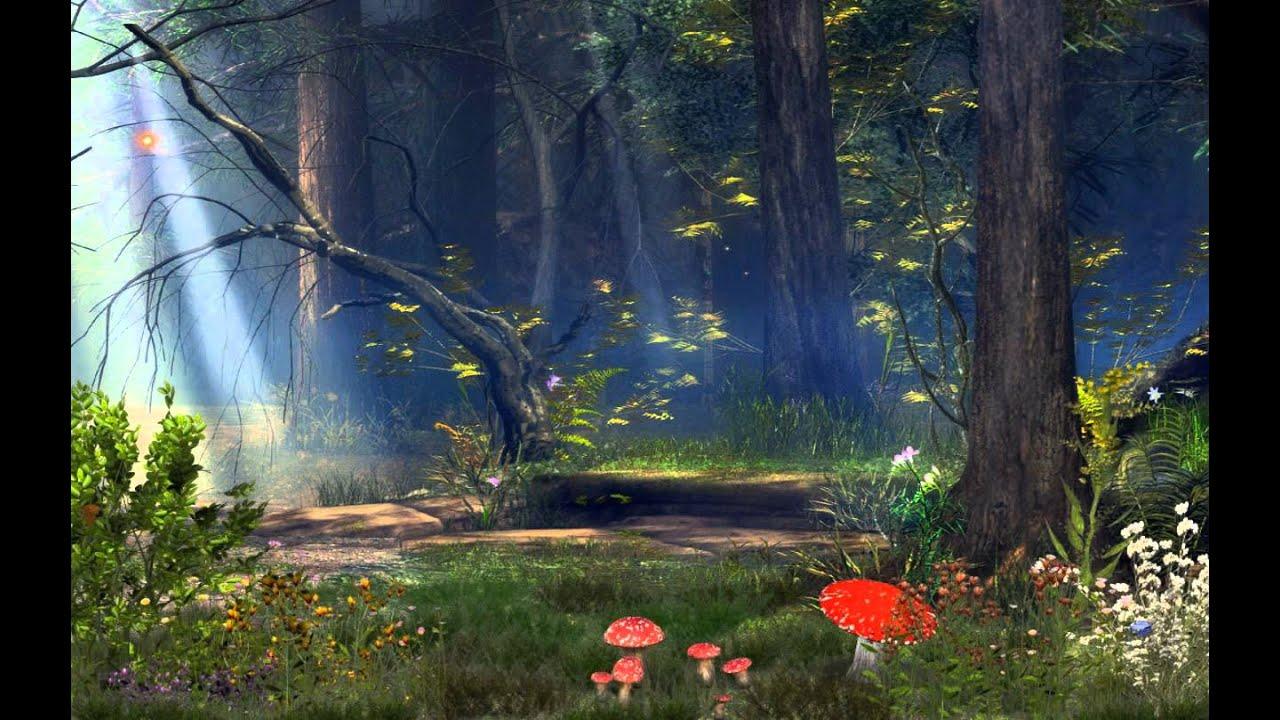 картинки волшебный лес