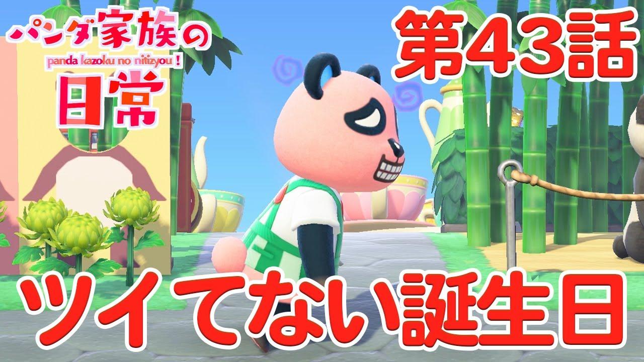【あつ森アニメ】パンダ家族の日常#43「ツイてない誕生日」