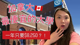 加拿大🇨🇦學費最便宜的大學 - Top 7 Cheapest Colleges in Canada