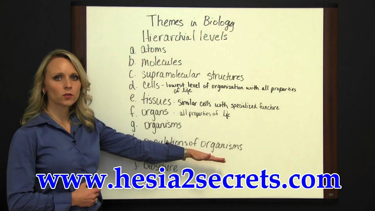 HESI A2 Exam Prep - Themes in Biology - YouTube