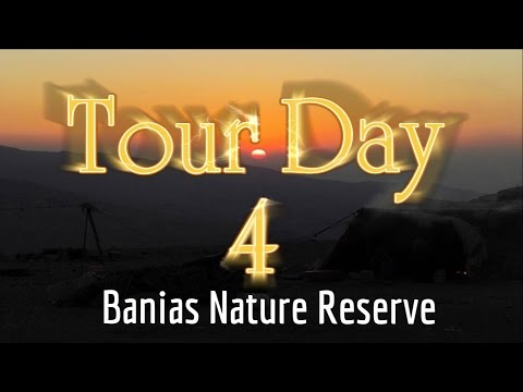 Visit to the Holy Land  Tour Day 4:  Visit to Banias Nature Reserve   Caesarea Philipi