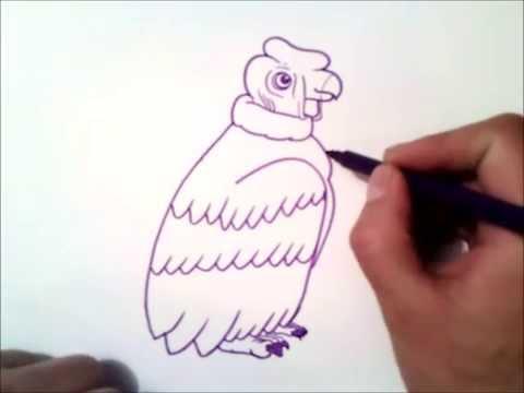 Como Dibujar Un Condor Paso A Paso | Como Dibujar Un Condor