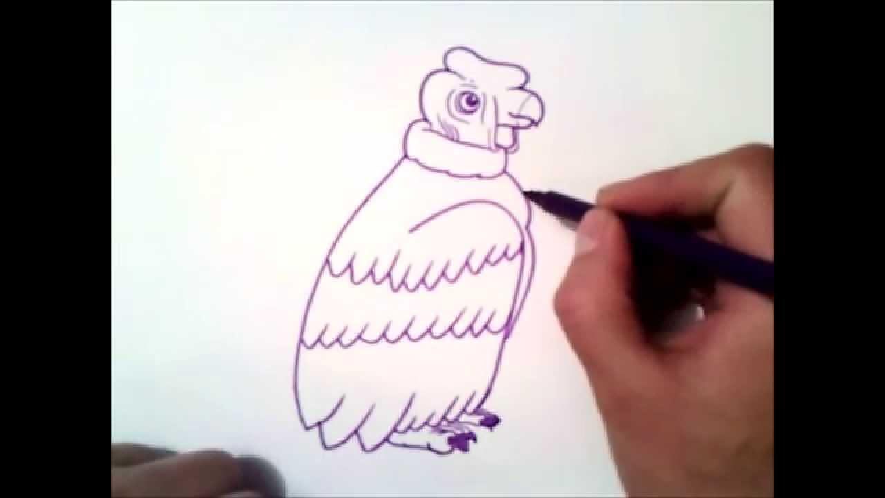 Como dibujar un condor paso a paso como dibujar un for Como disenar un jardin paso a paso