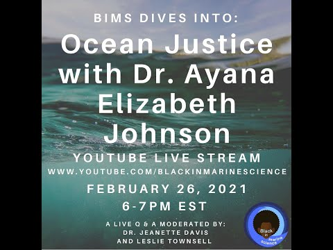Video Of The Week | BIMS DIVES into Ocean Justice with Dr. Ayana Elizabeth Johnson