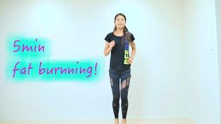 【5分で脂肪燃焼!】有酸素運動エクササイズ workout exercises at home to lose weight thumbnail