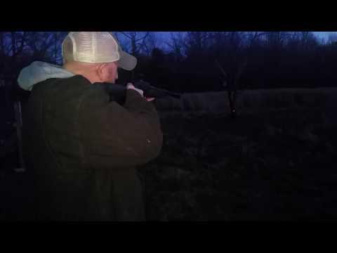 Feyachi hot tactical red laser beam dot sight scope mount for gun
