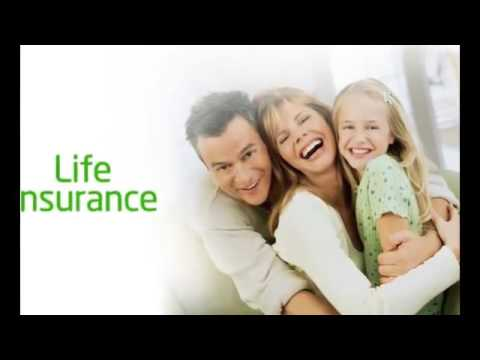 Variable life insurance policy