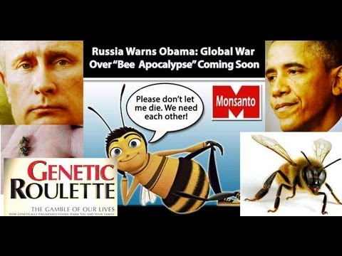 """BEE Apocalypse"" Russia Warns Obama of War!!!"