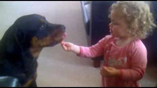 Ferocious Rottweiler Eats Children!!!!!!