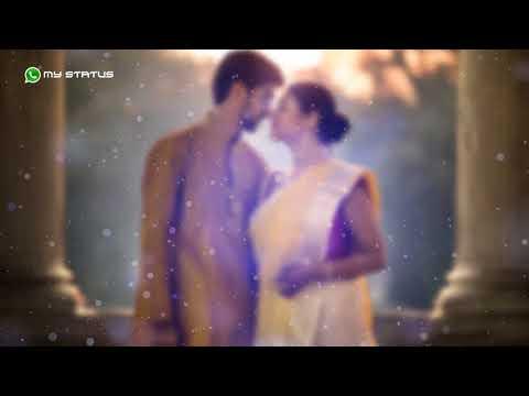 tumi-robe-nirobe-rabindara-sangeet-whats-app-status-part-1