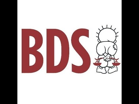 Arab Israelis: What do you think of the BDS Movement?