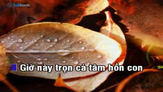 [Karaoke TVCHH] 002 - TRỌN CẢ TẤM LÒNG- Salibook