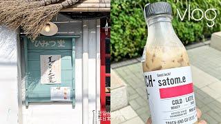 (JP) 일본 브이로그ㅣ일본 사는 주부 일상 | 일본맛…
